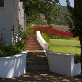 DeMorgenzon-Stellenbosch-8